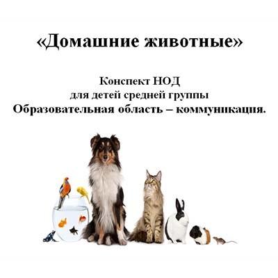 Конспект НОД для детей средней группы Домашние животные