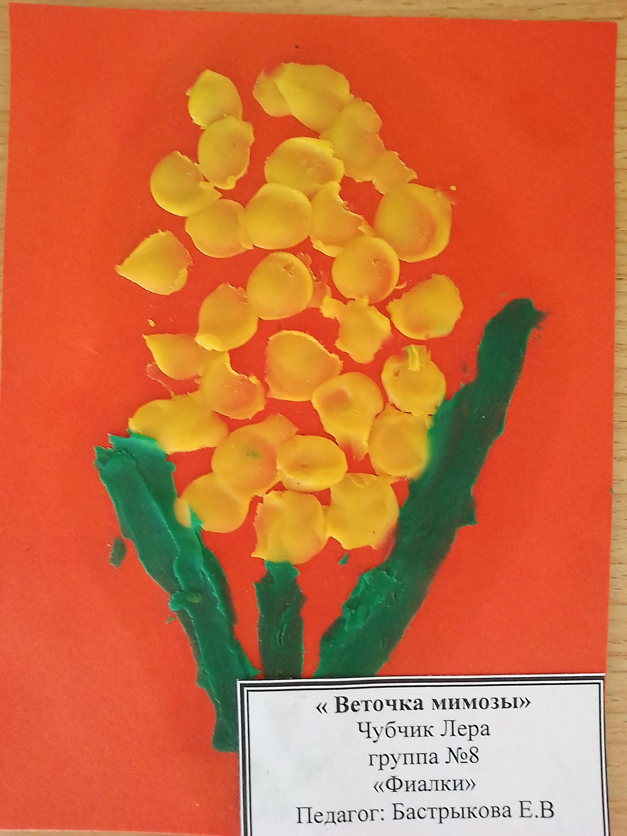 Веточка Мимозы 8 марта