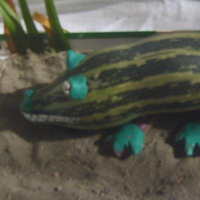 Поделка Алтайский крокодил