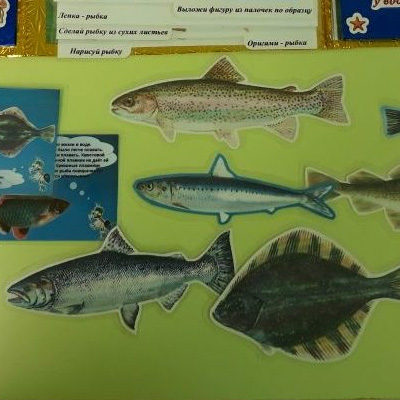 Лэпбук Рыбы из бумаги разной фактуры